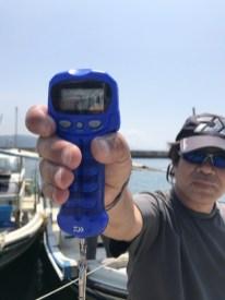 2019-8-4-マダコ2.1kg