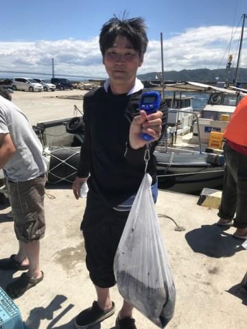 2019-8-5-マダコ釣果(3番頭22杯、目方5.76kg、平均262g)