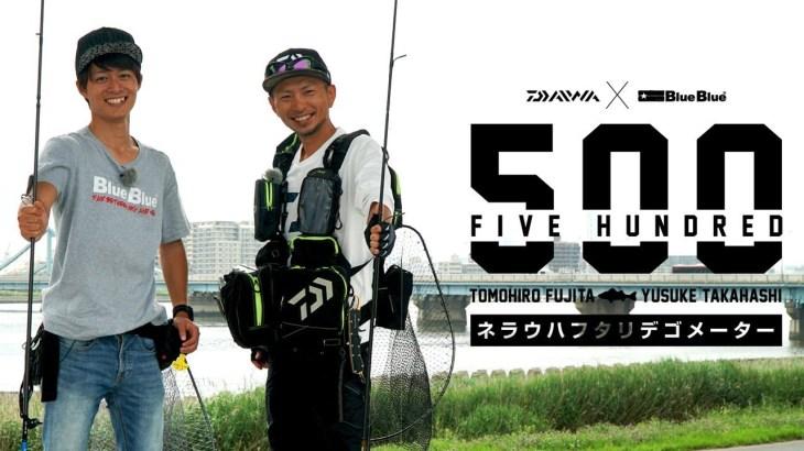 [DAIWA×BlueBlue] 東京湾奥でシーバス5mを釣り上げろ!!【FIVE HUNDRED】VOL.1
