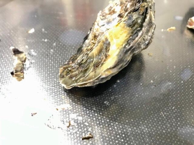 殻の先端をハサミで切り落とした牡蠣