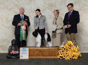 Best Junior Handler winner photo with judge and handler