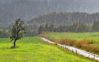 rainy-day-02