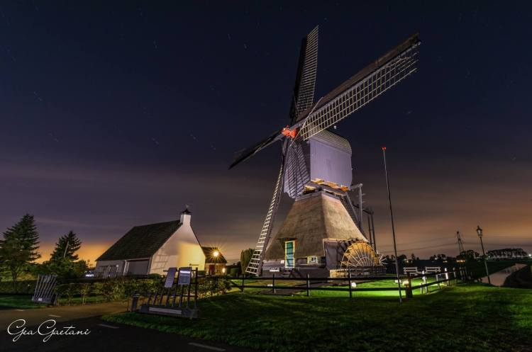 Kinderdijk, Netherlands © Gea Gaetani d'Aragona