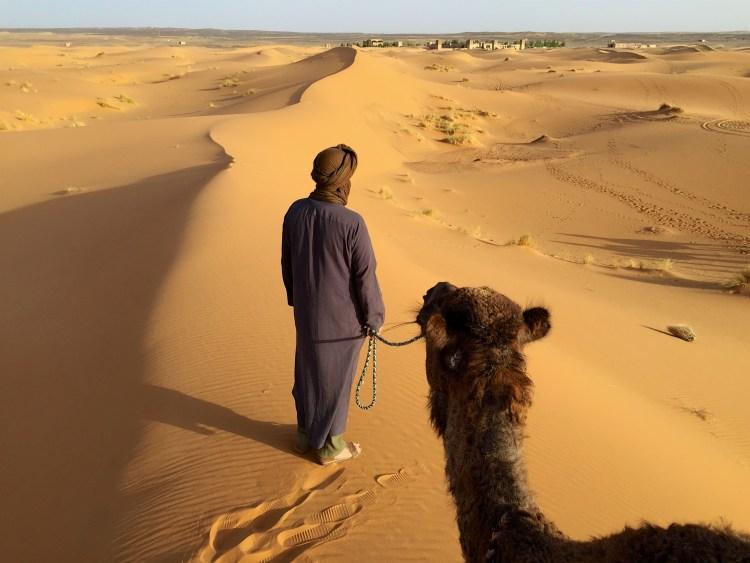 Camel and Touareg Desert Nomad