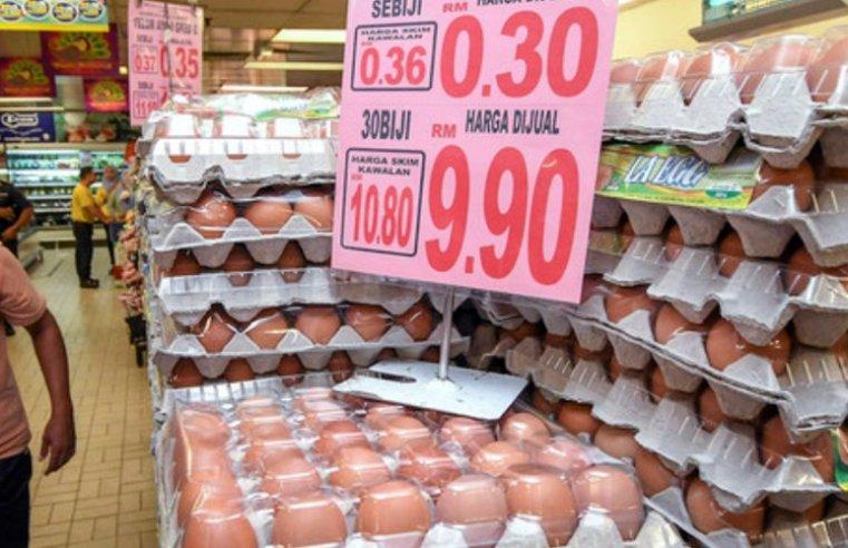Mana ada harga telur turun!