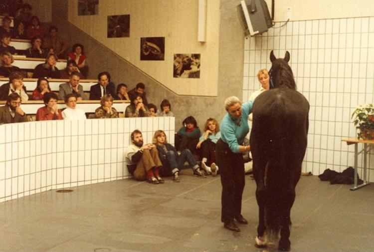 Linda Tellington Jones shows the TTEAM method on a horse at the University of Zurich