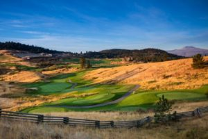 Predator Ridge boasts world class golf courses