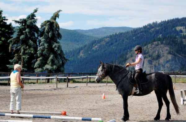 Robyn Hood instructs a rider on a gray horse at the Tellington TTouch clinic