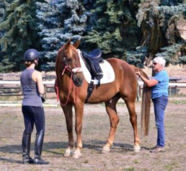 Robyn Hood uses TTouch tail work before a ride