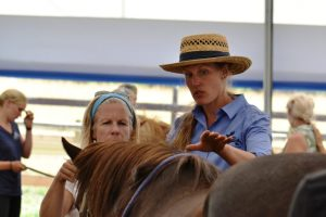 Mandy Pretty describes observations along a horse's back