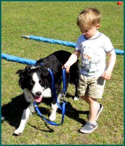 A child leads a dog on leash.