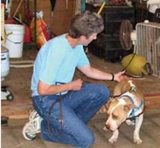 Kathy Cascade works with a Michael Vik rescue dog