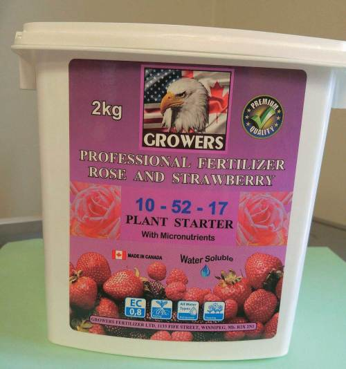 Growers Rose & Strawberry - Qty. 454 gr