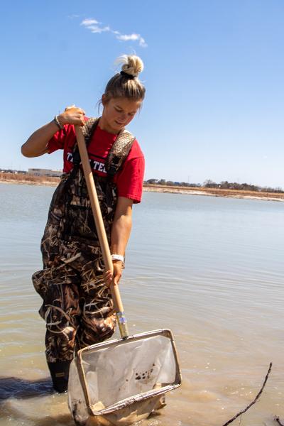searching for aquatic Invertebrates.