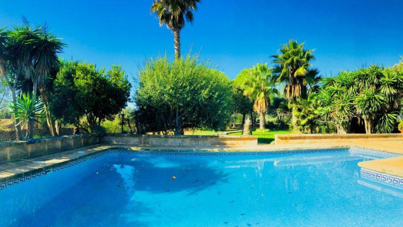 piscina+villa+zona+cesped+swimming+pool+Grasfläche