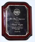 2011 PMPA Award
