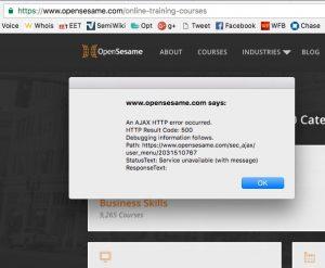 OpenSesame error message
