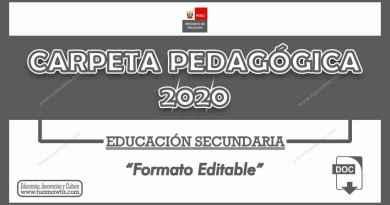 Carpeta Pedagógica 2020 – Educación Secundaria [Formato Editable]