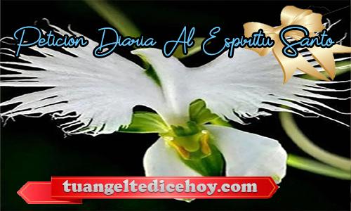 PETICIÓN DIARIA AL ESPÍRITU SANTO 19/05/2020