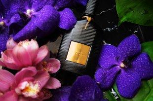 [香氛][香水] 湯姆福特TOM FORD 黑蘭花,午夜蘭花(性感濃郁香調)