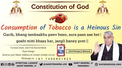 God Constitution eng (14)
