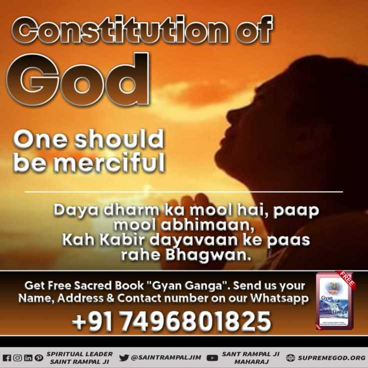 God Constitution eng (24)