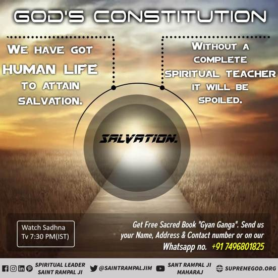 God Constitution eng (39)