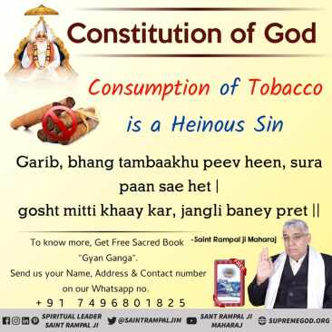God Constitution eng (55)