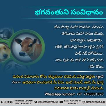 God's Constitution Telugu Facebook (10)