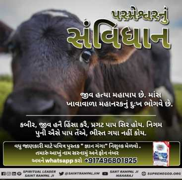 God's constitustion fb gujrati (9)