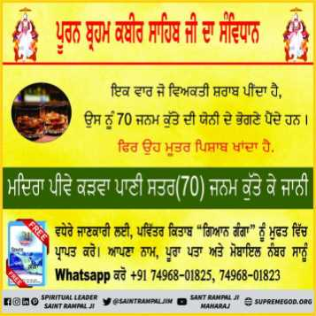 Punjabi God Constitution (8)
