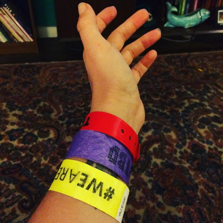 TBD Fest in Sacramento, Ca. September 2015. Photo Sarah Elliott