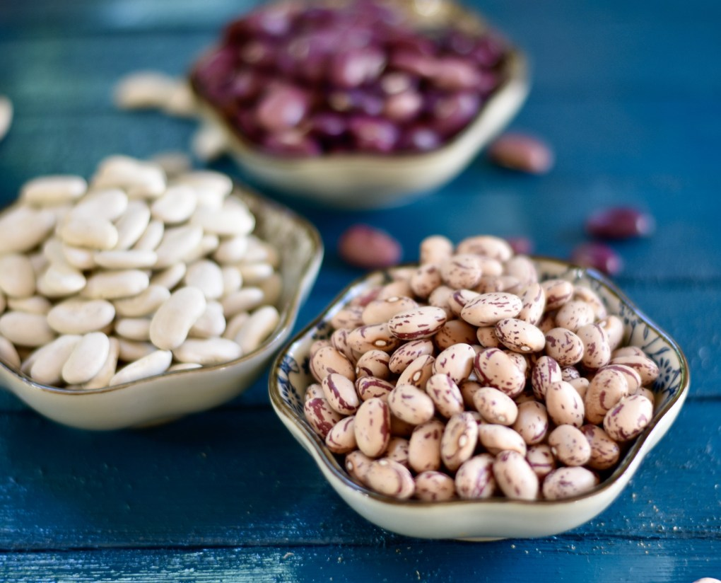 A close-up of colorful heirloom beans on a blue background.