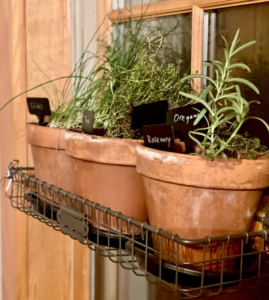 Indoor windowsill herb garden.