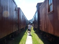 So many train cars!