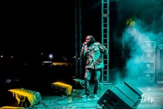 20052017_festival_alternativo_Vinicius_Grosbelli_0035-279