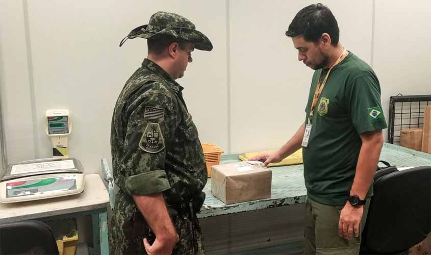 Ibama apreende oito cobras vivas enviadas pelos Correios para SP