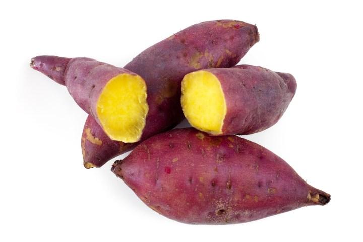 Shih Tzu pode comer batata doce?