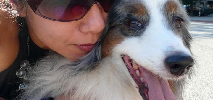 TN113_dogs_divorce_720x340_F