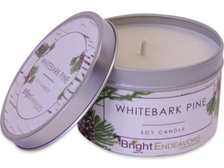 tuenight gift guide stacy morrison give back bright endeavors candle