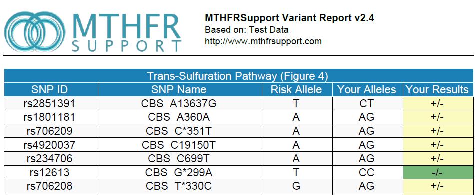 mthfrsupport-2-4