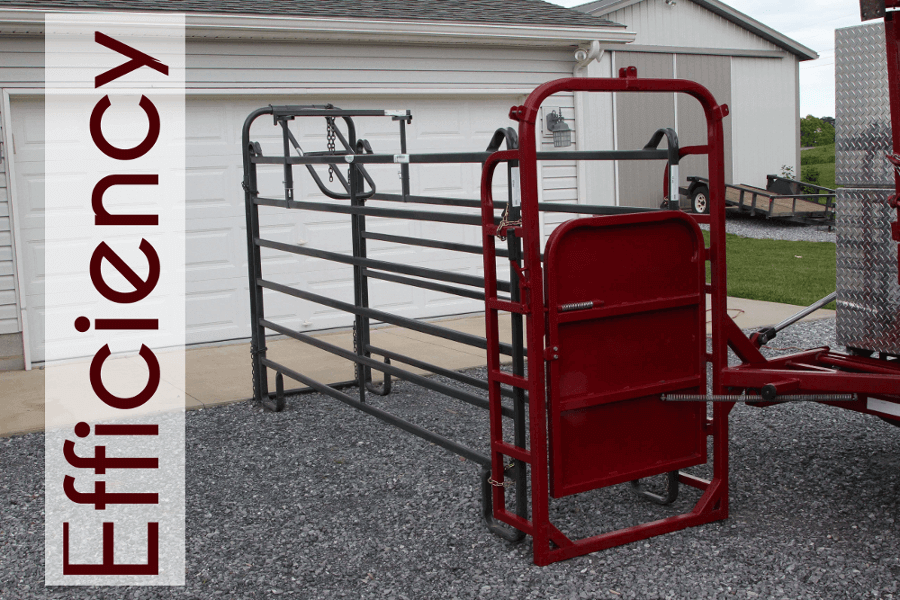 Alley Chute For Hoof Trimming Chute