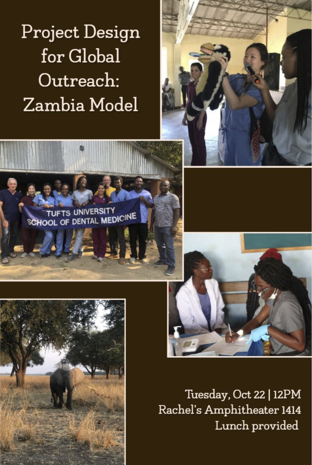 Project-Design-for-Global-Outreach-Zambia-Model-Flyer