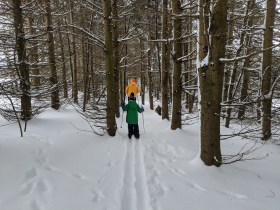 Photo of XC skiing at Tug Hill Outfitters, fresh powder