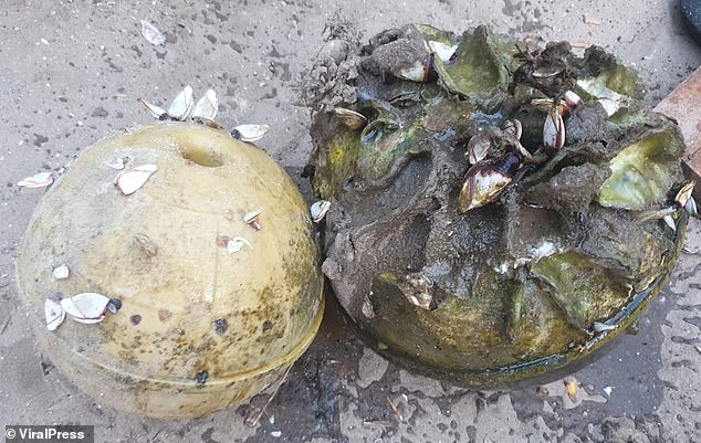 Tesoro encontrado en una playa de Tailandia