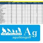 170507 AGU, Clasificación del torneo