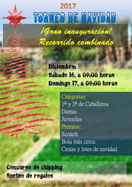 171217 TPA, Cartel del torneo