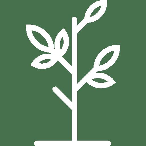 icon-binnenplanten