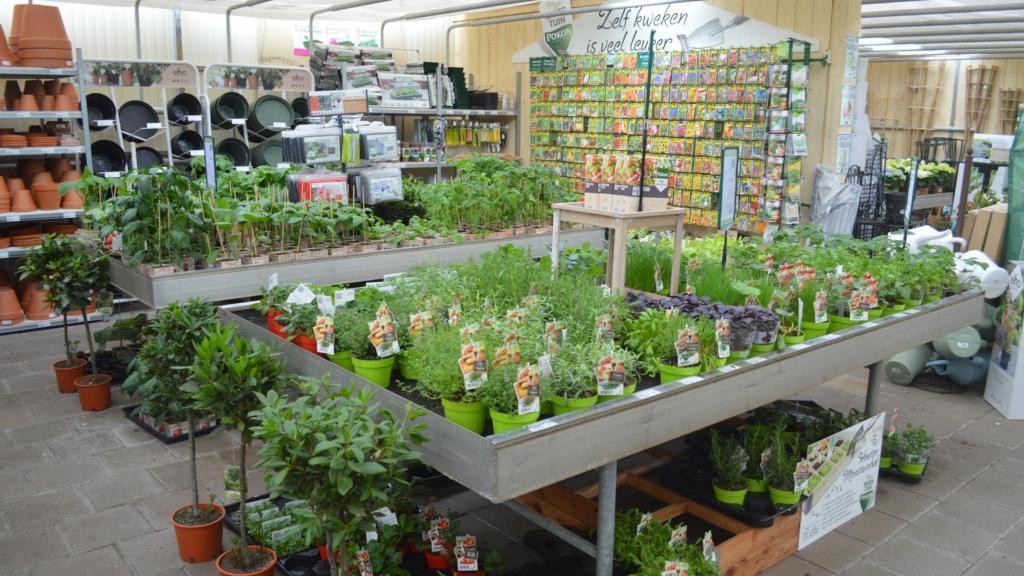 Tuincentrum Groenen Impressie 21