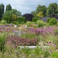 De Vlinderhof in Utrecht is uniek in Nederland